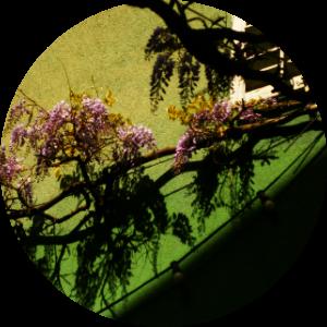 floralix-freiburg